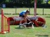 agility-2015-040