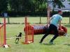 agility-2015-043